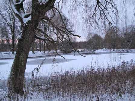 rembrandt park in winter